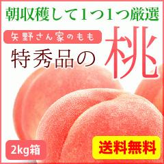 特秀品の桃 2kg箱