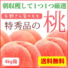 特秀品の桃 4kg箱