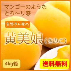 黄美娘4kg箱 黄金桃