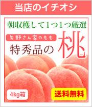 イチオシの桃