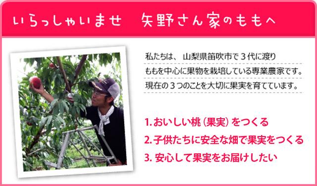 ようこそ矢野さん家のももへ